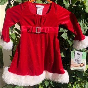 Toddler Christmas Dress NWT